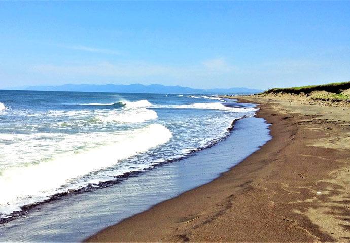 ピクニックランチつき石狩浜自然探索